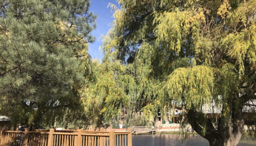 Fall Family Retreat
